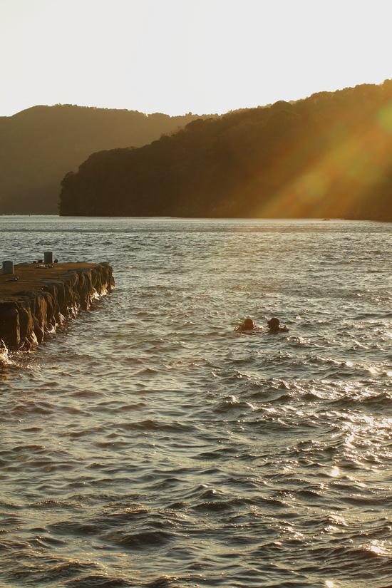 大瀬崎 湾内での早朝ダイビング