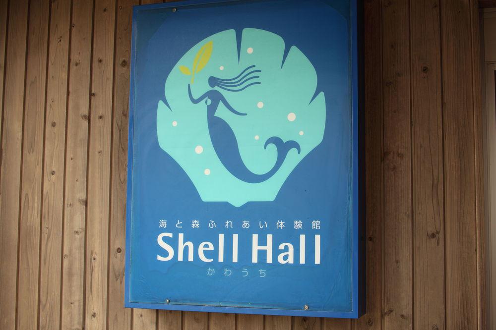 青森県むつ市「海と森ふれあい体験館 Shell Hall シェルホール」